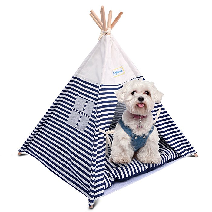 isYoung Washable Portable Pet Tent Bed for Small dog / Cat  sc 1 st  isYoung & isYoung Washable Portable Pet Tent Bed  Cat / Dog Tent House with Mat